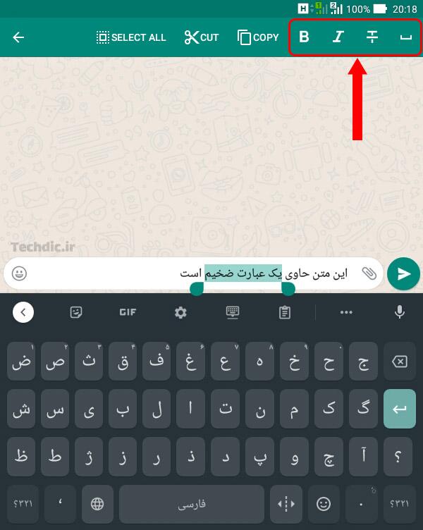 تعیین فرمت ظاهری پیام در واتساپ
